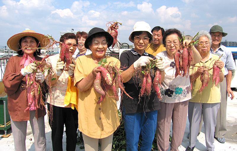 復活!尼の伝統野菜 – 南部再生